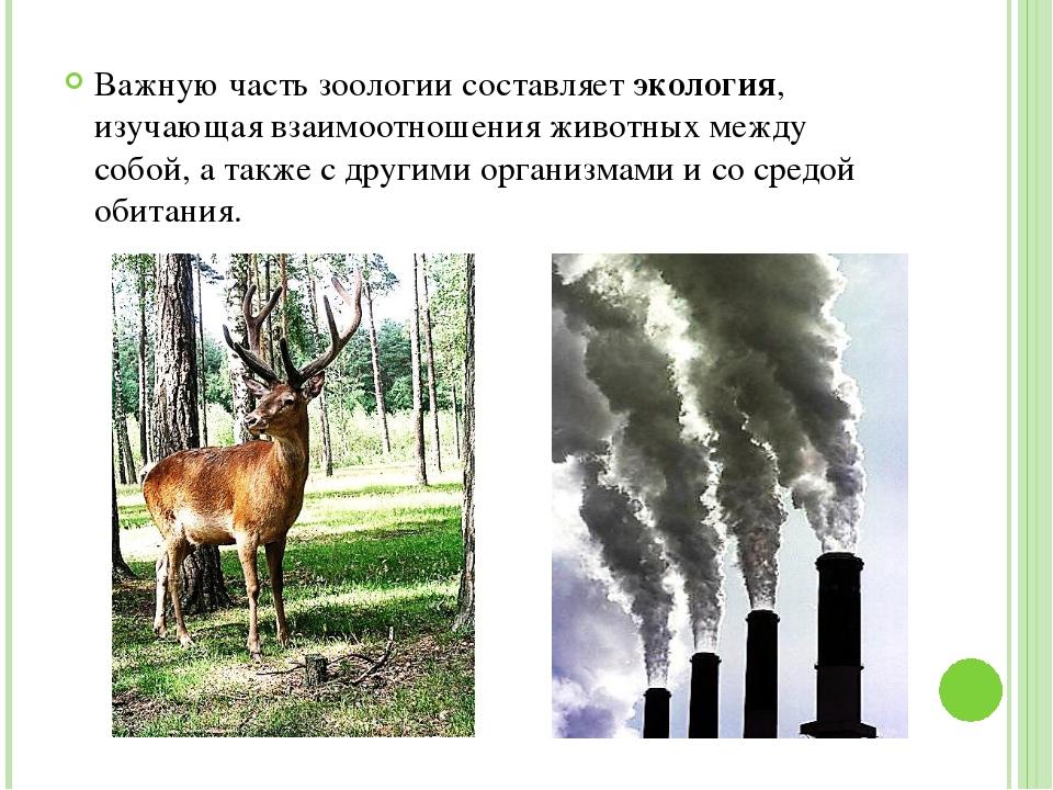 Важную часть зоологии составляет экология, изучающая взаимоотношения животны...