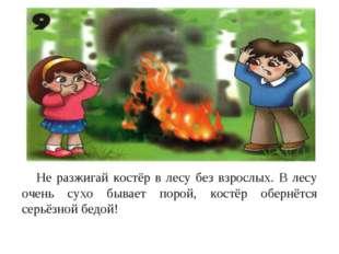 Не разжигай костёр в лесу без взрослых. В лесу очень сухо бывает порой, кост