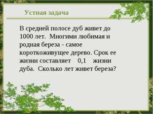 В средней полосе дуб живет до 1000 лет. Многими любимая и родная береза - сам