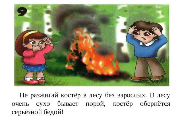 Не разжигай костёр в лесу без взрослых. В лесу очень сухо бывает порой, кост...