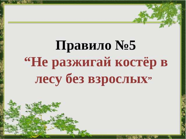 """Правило №5 """"Не разжигай костёр в лесу без взрослых"""""""