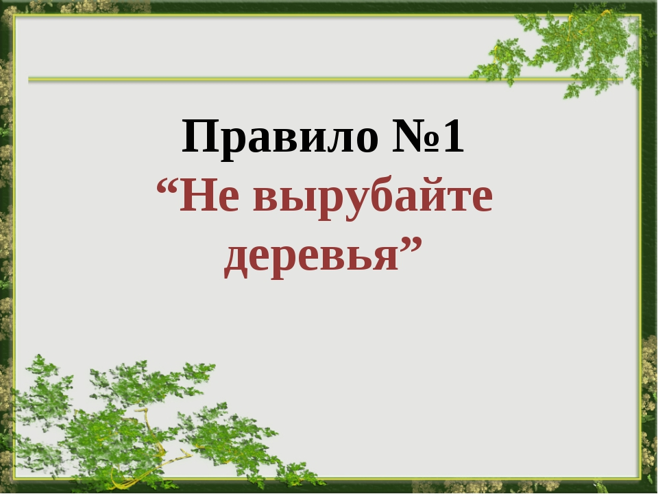"""Правило №1 """"Не вырубайте деревья"""""""