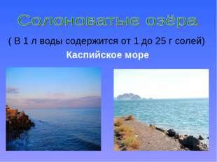 ( В 1 л воды содержится от 1 до 25 г солей) Каспийское море
