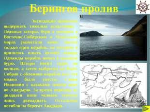 Интернет сайты: http://ru.wikipedia.org http://tvtorrent.ru/ http://investiga