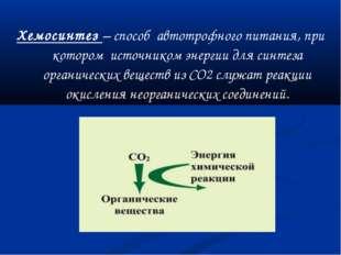 Хемосинтез – способ автотрофного питания, при котором источником энергии для