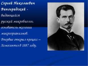 Сергей Николаевич Виноградский - выдающийся русский микробиолог, основатель э