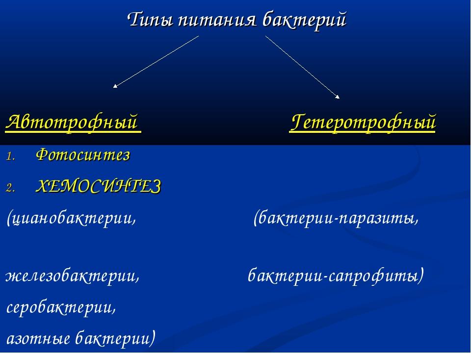 Типы питания бактерий Автотрофный Гетеротрофный Фотосинтез ХЕМОСИНТЕЗ (цианоб...