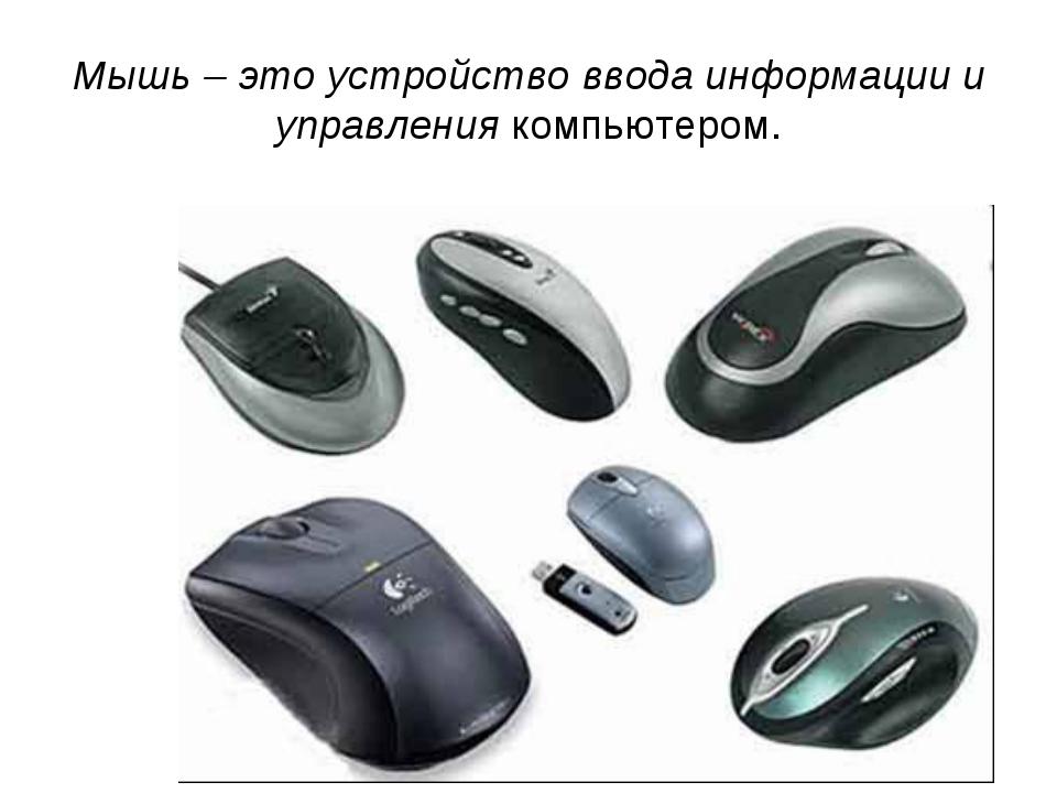 Мышь – это устройство ввода информации и управления компьютером.