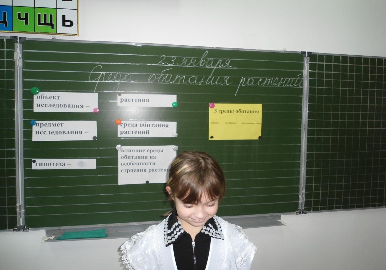 E:\Documents and Settings\User\Рабочий стол\ОТКурокШИЛИНА\DSC02601.JPG
