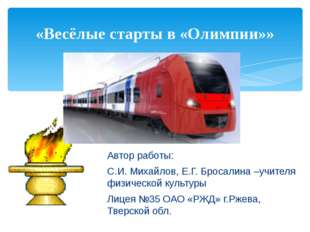 Автор работы: С.И. Михайлов, Е.Г. Бросалина –учителя физической культуры Лиц