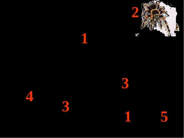 5 - 3 = 2 3 + 1 = = = = = = 4 - - - 2 2 2 + + 3 3 5 5 5 1 1 1 4 2 2 4