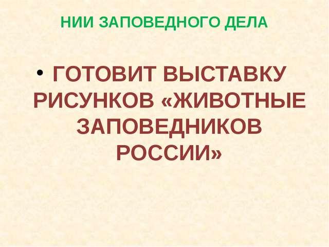 НИИ ЗАПОВЕДНОГО ДЕЛА ГОТОВИТ ВЫСТАВКУ РИСУНКОВ «ЖИВОТНЫЕ ЗАПОВЕДНИКОВ РОССИИ»