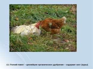 13. Птичий помет – ценнейшее органическое удобрение – содержит азот (куры).