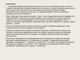 Заключение Кунгурский муниципальный район расположен на юго-востоке Перм