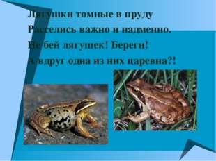 Лягушки томные в пруду Расселись важно и надменно. Не бей лягушек! Береги! А