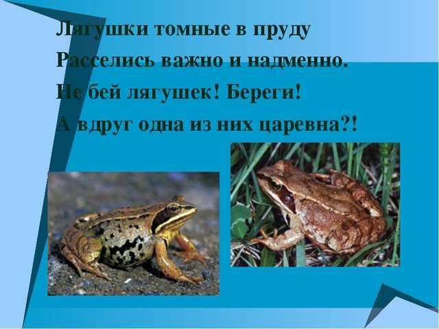 Лягушки томные в пруду Расселись важно и надменно. Не бей лягушек! Береги! А...