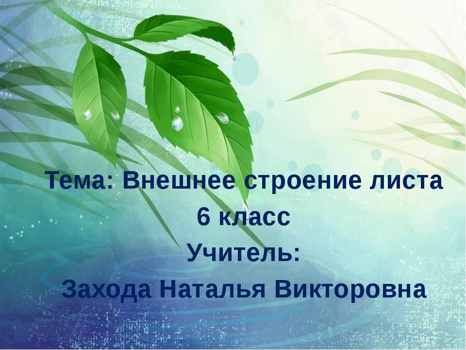 Тема: Внешнее строение листа 6 класс Учитель: Захода Наталья Викторовна