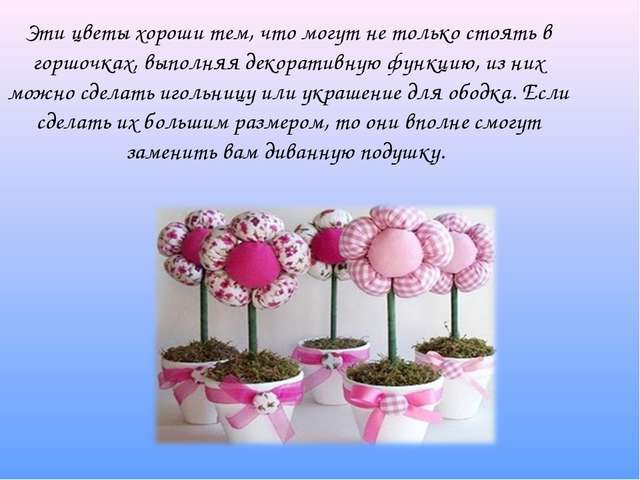 Эти цветы хороши тем, что могут не только стоять в горшочках, выполняя декор...