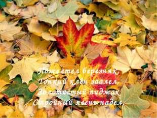. Пожелтел березняк, Тонкий клён заалел, Золотистый пиджак Стройный ясень над