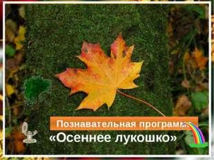 «Осеннее лукошко» Познавательная программа