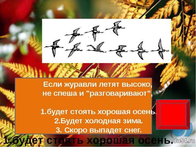 воробьи http://img-2006-03.photosight.ru/26/1344384.jpg снег http://www.poetr...