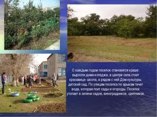 С каждым годом поселок становится краше: выросли дома-котеджи, в центре села