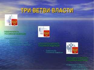 ТРИ ВЕТВИ ВЛАСТИ    ИСПОЛНИТЕЛЬНАЯ ВЛАСТЬ РОССИЙСКОЙ ФЕДЕРАЦИИ Правительст