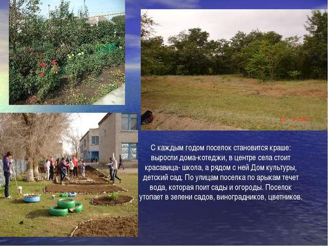 С каждым годом поселок становится краше: выросли дома-котеджи, в центре села...