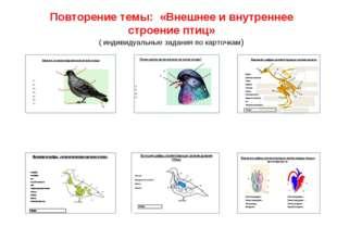 Повторение темы: «Внешнее и внутреннее строение птиц» ( индивидуальные задани