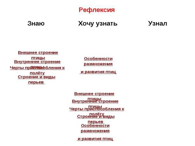 Конспекты урока по биологии 8 вид