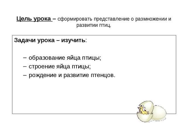 Задачи урока – изучить: образование яйца птицы; строение яйца птицы; рождение...
