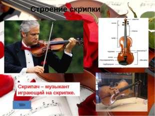 Строение скрипки Скрипач – музыкант играющий на скрипке.