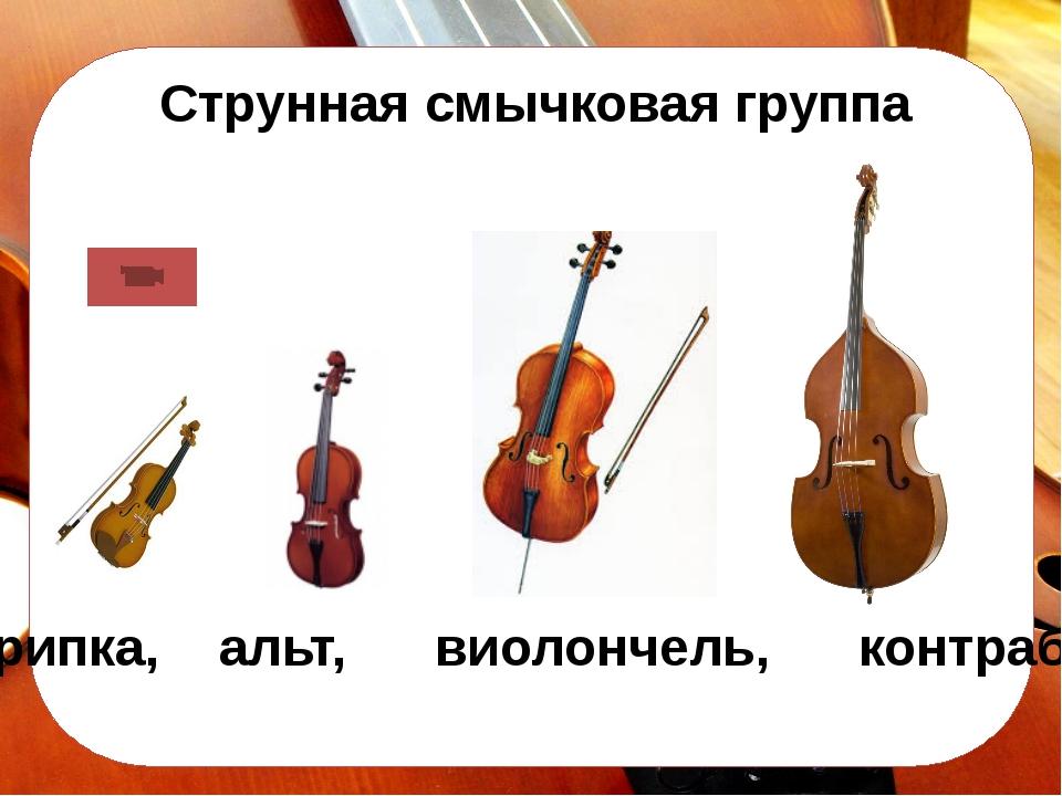 Струнная смычковая группа скрипка, альт, виолончель, контрабас