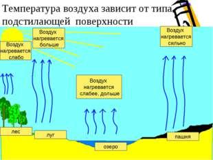 Температура воздуха зависит от типа подстилающей поверхности лес луг Воздух н