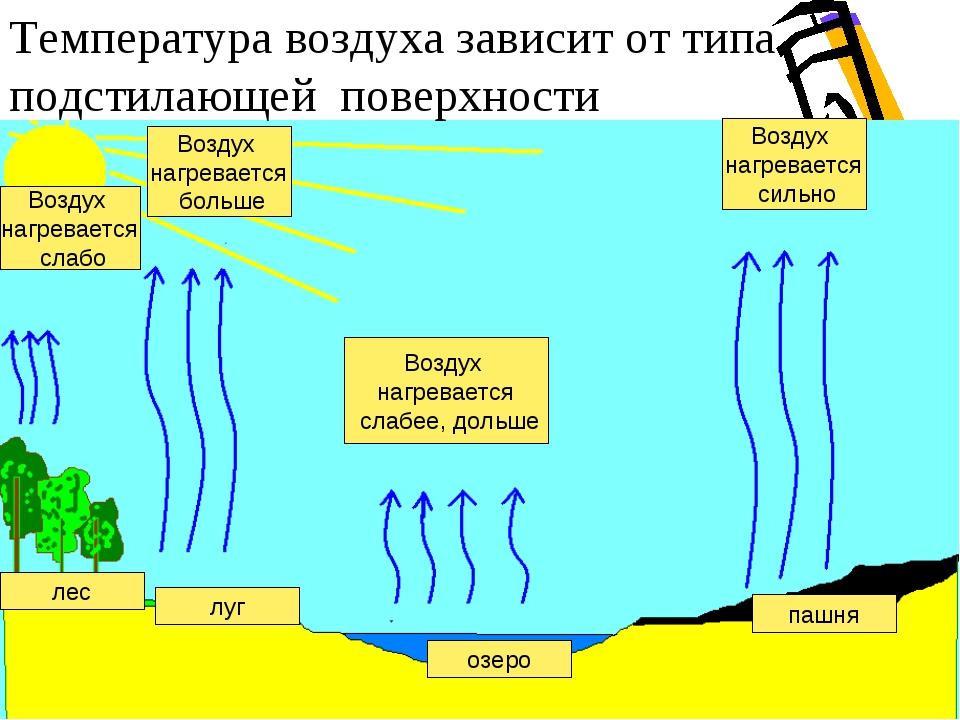 Температура воздуха зависит от типа подстилающей поверхности лес луг Воздух н...