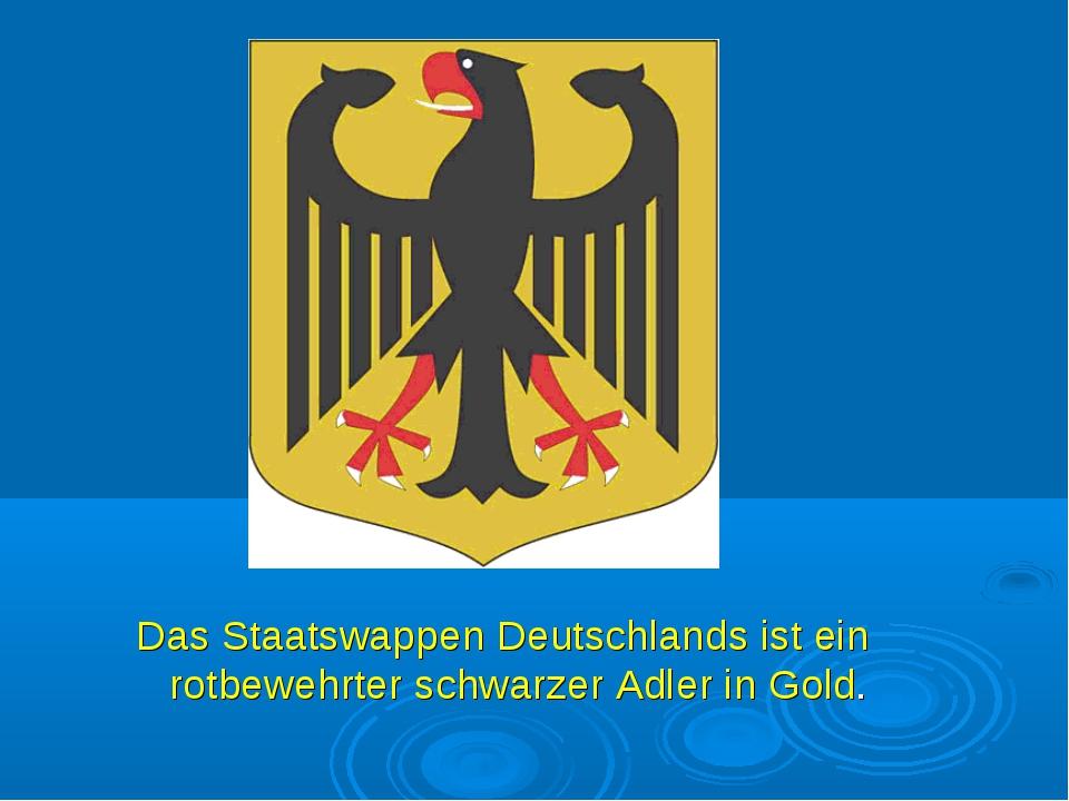 Das Staatswappen Deutschlands ist ein rotbewehrter schwarzer Adler in Gold.