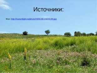 Источники: Фон: http://naturelight.ru/photo/2009-08-14/24148.jpg