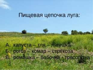 Пищевая цепочка луга: А. капуста – тля – лягушка Б. рогоз – комар – стрекоза