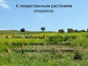 К лекарственным растениям относятся: А. Рожь, мышиный горошек, рогоз Б. Вьюно