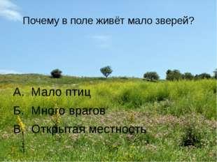 Почему в поле живёт мало зверей? А. Мало птиц Б. Много врагов В. Открытая мес