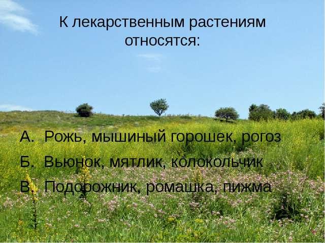 К лекарственным растениям относятся: А. Рожь, мышиный горошек, рогоз Б. Вьюно...