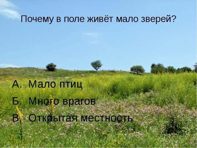 Почему в поле живёт мало зверей? А. Мало птиц Б. Много врагов В. Открытая мес...