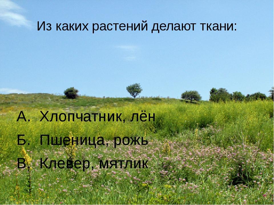 Из каких растений делают ткани: А. Хлопчатник, лён Б. Пшеница, рожь В. Клевер...