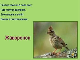 Гнездо своё он в поле вьёт, Где тянутся растения. Его и песни, и полёт Вошли