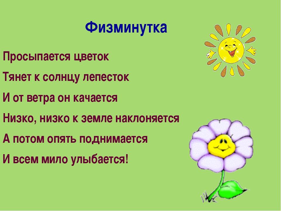 Физминутка Просыпается цветок Тянет к солнцу лепесток И от ветра он качаетс...