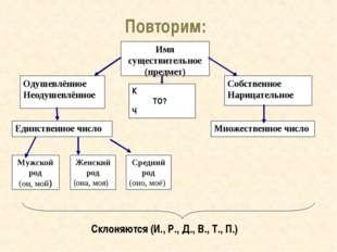 Повторим: Склоняются (И., Р., Д., В., Т., П.) Имя существительное (предмет)