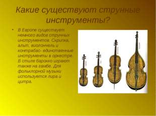 Какие существуют струнные инструменты? В Европе существует немного видов стру