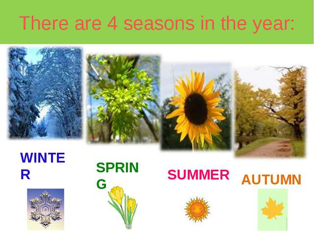 There are 4 seasons in the year: WINTER SPRING SUMMER AUTUMN