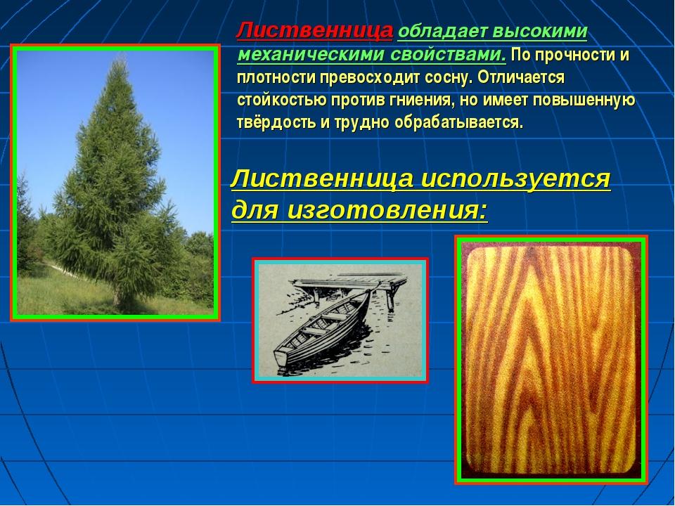 Лиственница обладает высокими механическими свойствами. По прочности и плотно...
