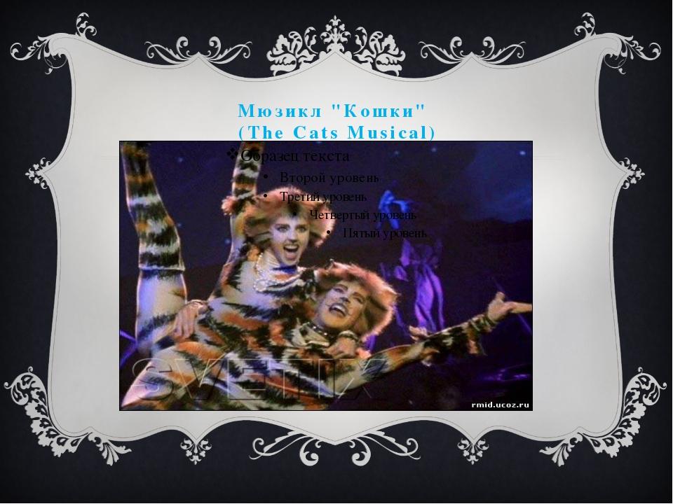 """Мюзикл """"Кошки"""" (The Cats Musical)"""